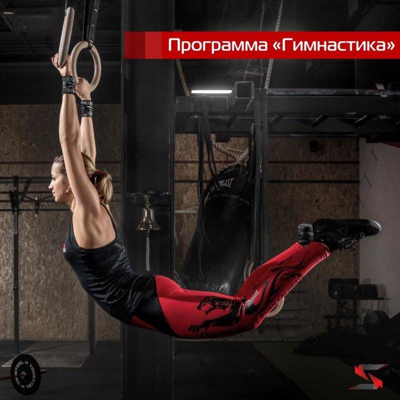 Тренировочная программа «Гимнастика»